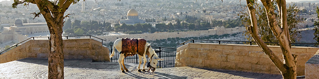Jerusalem 1 day tours
