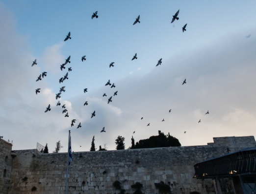 The Western Wall - 1