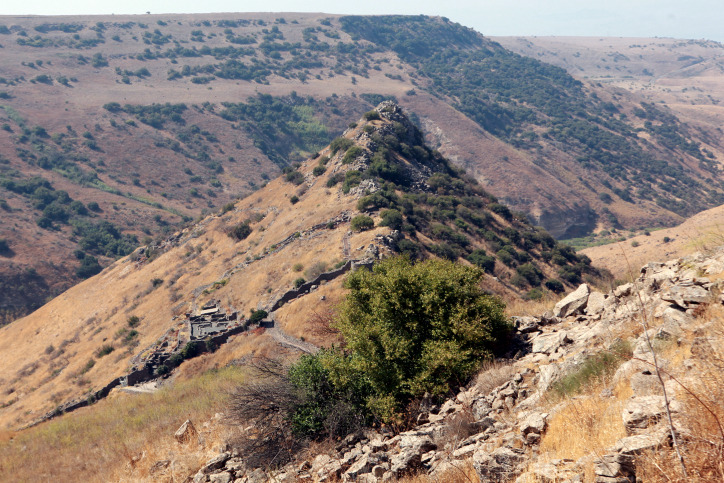 Safed and Golan Heights Tour - 2